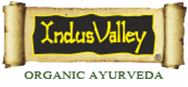 Indus valley logo
